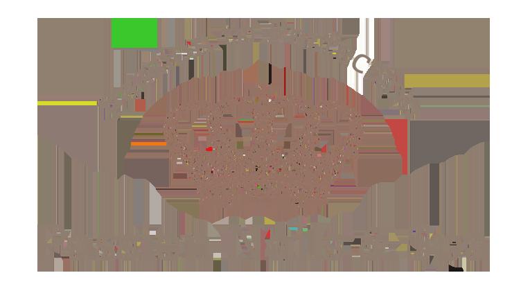 Passion Nails Salon: Nail Salon in Lincoln Park  Chicago IL 60614